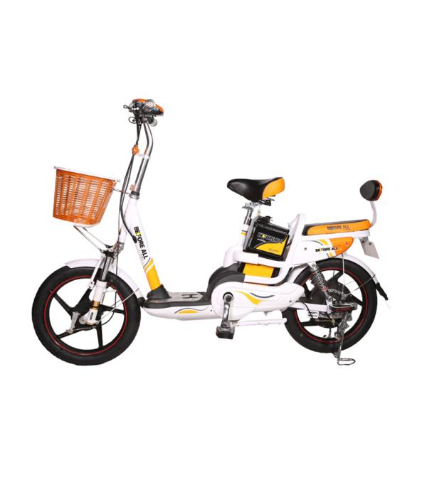 xe đạp điện giá rẻ