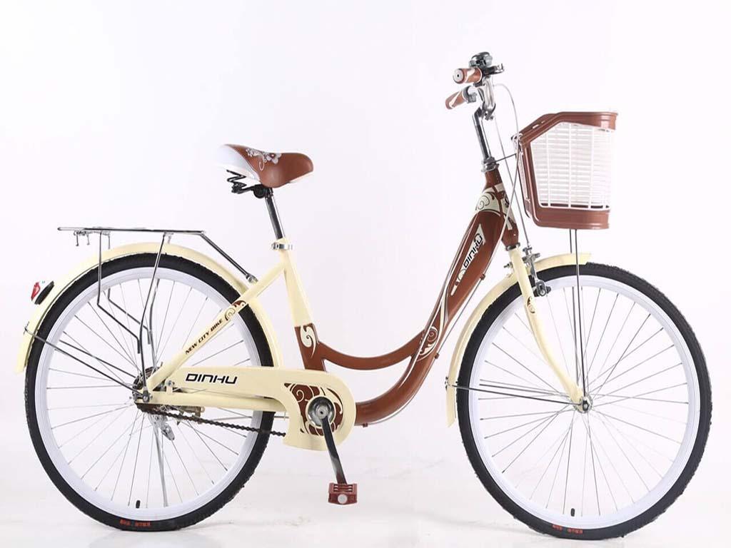 Xe đạp phổ thông 24 inch DINHU